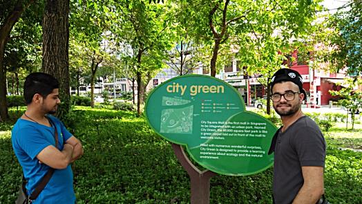 city-green-park-singapore-credit-www.accidentaltravelwriter.net