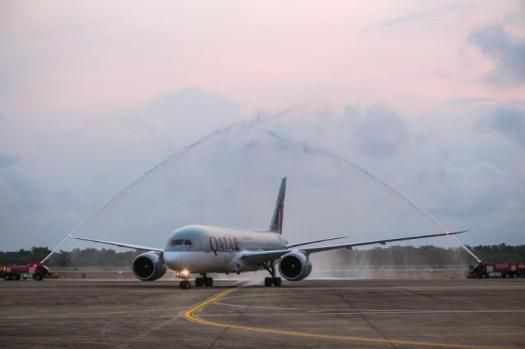 image-of-boeing-dreamliner-getting-water-cannon-salute