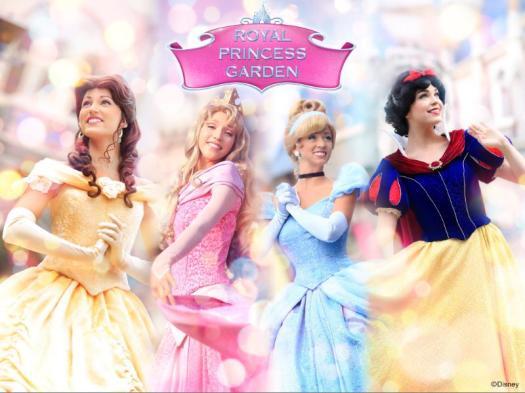 image-hong-kong-disneyland-disney-princesses